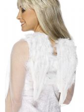 Wings & Wishes Angels Feather Wings